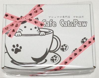 cafe_cat_IMG_4821.jpg