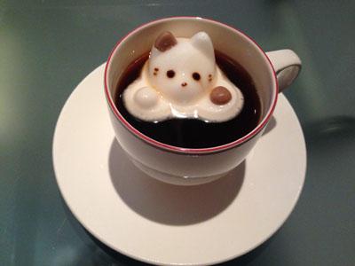 cafe_cat_IMG_4823.jpg