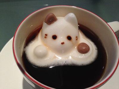 cafe_cat_IMG_4824.jpg
