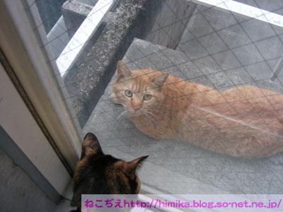 chata201005_DSCN5418.jpg