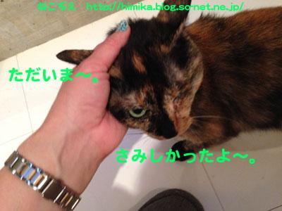 kuki_amae_IMG_1155.jpg