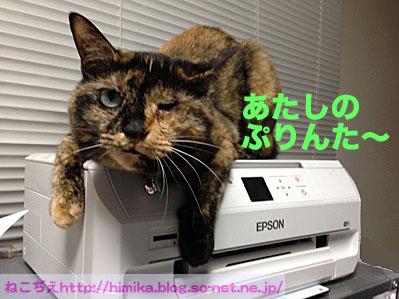 kuki_printer_IMG_0777.jpg