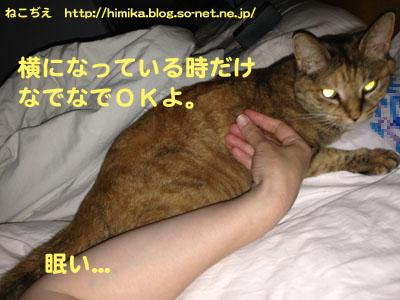 shima_soine_IMG_1160.jpg