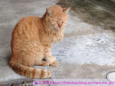 chata201409_IMG_1736.jpg