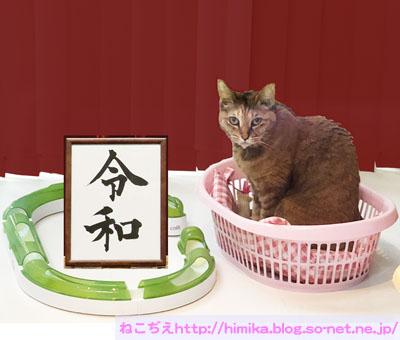 shima_reiwa3_IMG_9402.jpg